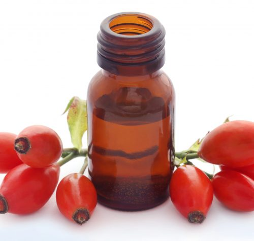 Rose hips with extracted essential oil in a bottle over white background